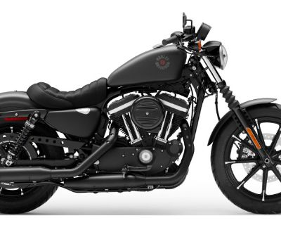 2021 Harley-Davidson Iron 883 Sportster Green River, WY