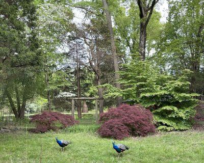 Private lake house garden resort - Warren County