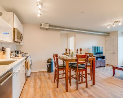 NW DC 30 Day Luxury Apartments One Bedroom - Logan Circle