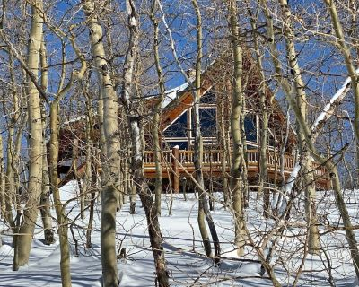 FAMILY CABIN GETAWAY NEAR TRAILS, GREAT VIEWS - Midway