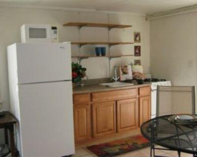 1233 East Mabel Street - 3 #3, Tucson, AZ 85719 Studio Apartment