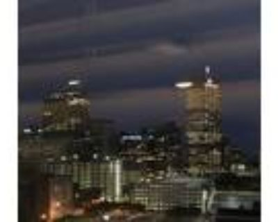 1 BDR furnished apartment downtown Indy
