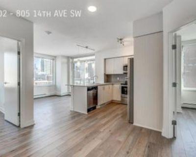 1302 #805-14thAV, Calgary, AB T2R 0N4 2 Bedroom Apartment