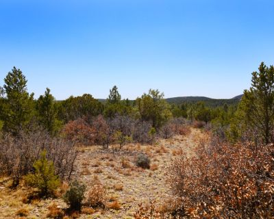 0.6 Acres for Sale in Timberon, NM