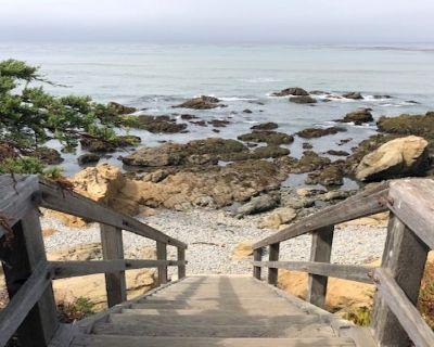 Oceanside Oasis - King Suite, Walk < 2 Short Blocks to Ocean & Tide Pools! - Marine Terrace