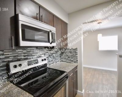 Updated Downstairs 1 bedroom/1bath apartment near Ft. Sam Houston