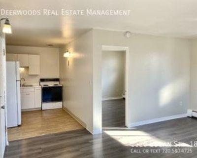 1120 N Logan St #18, Denver, CO 80203 1 Bedroom Apartment