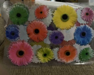 Beautiful flower placemats