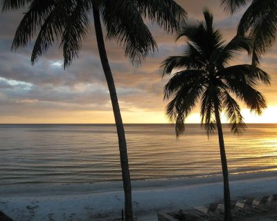 ON the Beach! 1B/1b - KING BED - GORGEOUS NEW REMODEL-WIFI - Mid Island