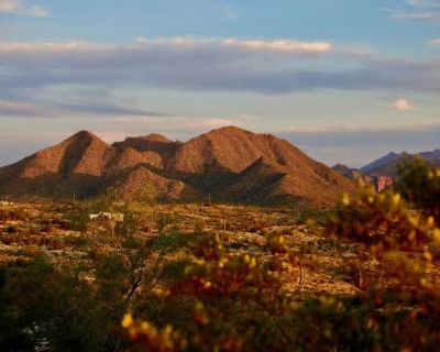 Plot For Sale In Fort Mcdowell, Arizona