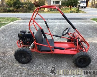 FS Trailmaster 6.5hp 2 seater Go Kart