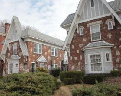 1251 S Brook St, Louisville, KY 40203 3 Bedroom Condo