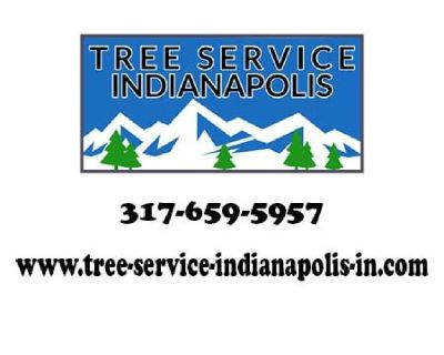 Tree Service in Indianapolis