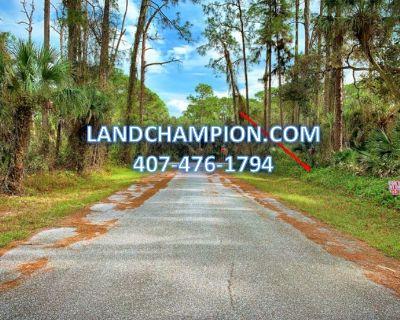1 Acre for Sale in Port Charlotte, FL