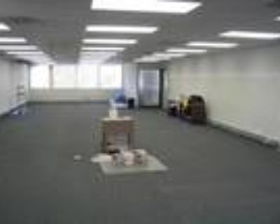 Large Office Space in Montrose