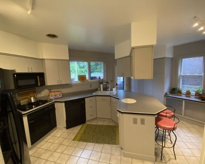 Sunny Bunny House Eco-Conscious Luxury Vacation Rental - Squirrel Hill