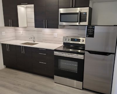 1 Bedroom Renovated Suite Close to the downtown Action