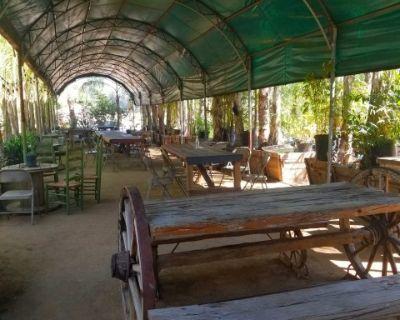 Ranch Patio Restaurant & Nursery Palms, Sylmar, Casa Hidaway, Sylmar, CA