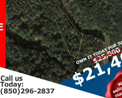 2 Acres for Sale in Ellijay, GA