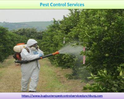 Pest Control Service |  Pest Control Services Lynchburg