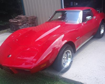 FS 1976 corvette beautiful