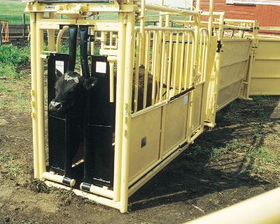 2020 For-Most Livestock Equipment Model 125 Handling and Sorting Chute