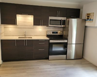 3 Bedroom Renovated Suite Close to the downtown Action