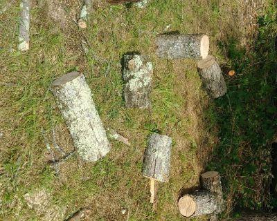 Oak firewood $15.00