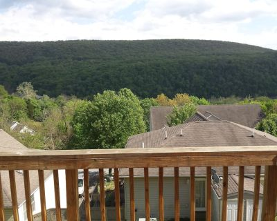 Paradise View OF THE Shenandoah Mountains Wineries and Breweries!! - Bolivar