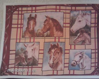 Beautiful Horse Fleece Throw with Matching Pillows