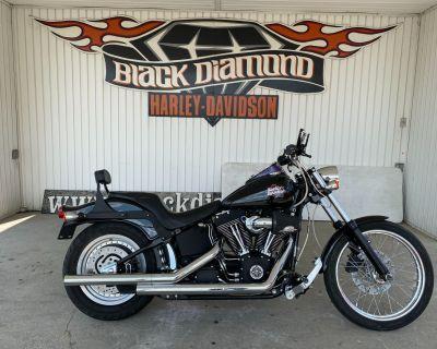 2002 Harley-Davidson FXSTB/FXSTBI Night Train Cruiser Marion, IL