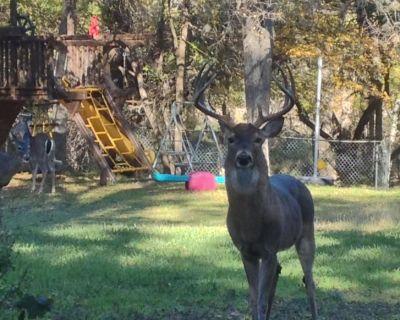 Parklike Yard W/deer ON 1acre 3000sqft, Sunroom, Indoor HOT Tub, Wifi & Internet - Vance Jackson