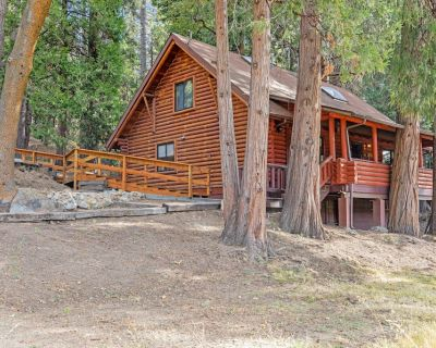 Dog-friendly cabin in the woods with WiFi, wood stove, and private washer/dryer! - Idyllwild