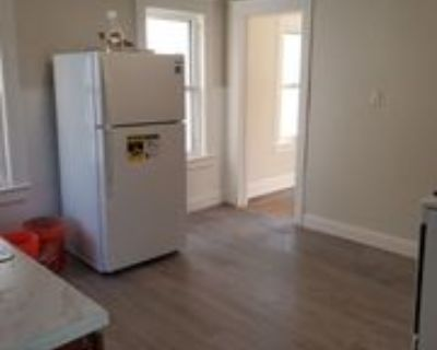 224 Lester Ave, Johnson City, NY 13790 2 Bedroom Apartment