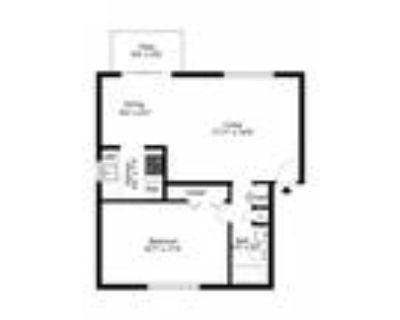 Georgetown Apartments - 1 Bedroom Apartment
