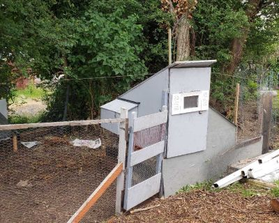 Chicken coop, fence and feeder all for 99 OBO