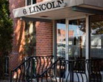 6 N Lincoln St #504, Denver, CO 80203 1 Bedroom Apartment