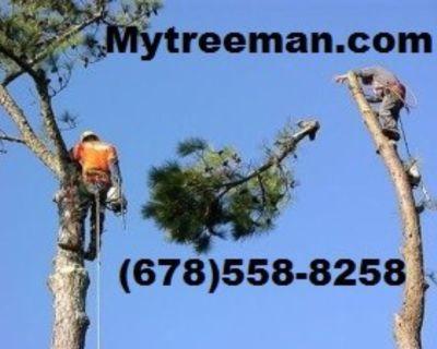 ☎☎~TREE CUT 678-558-8258 Removal Service's www.mytreeman.com