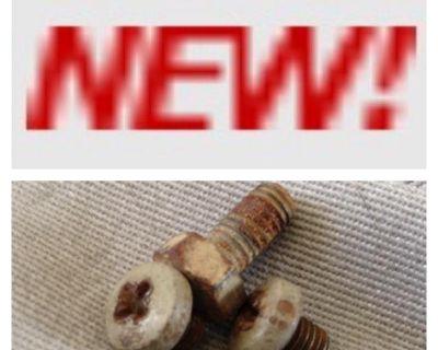 OG paint bolts/washers