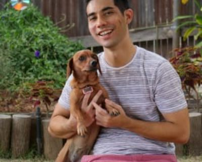 Ross, 24 years, Male - Looking in: Los Angeles Los Angeles County CA