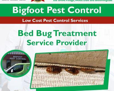 Bed Bug Treatment Elk grove village