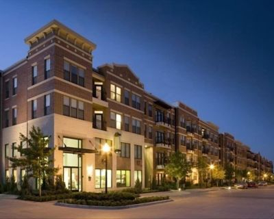 Vivre Centre Ville De Fort Worth - Simply Beautiful with View! - Fort Worth