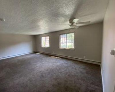 295-321 Beattie Rd. - 303-1 #303-1, Lockport, NY 14094 1 Bedroom Apartment