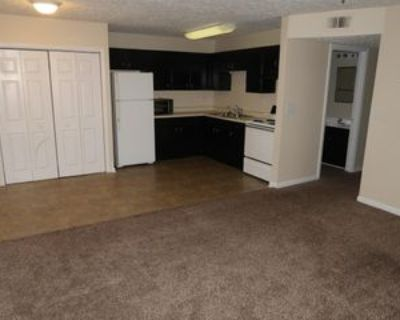 4107 Blue Lick Ct #4107-6, Louisville, KY 40229 3 Bedroom Apartment
