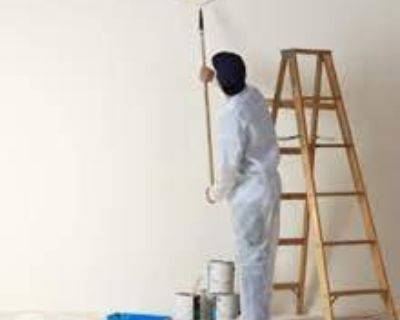 Professional Painting Services in Roseville