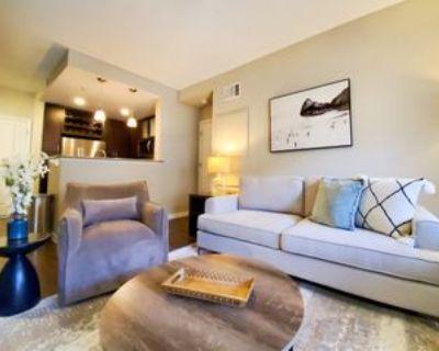 1460 Little Raven Street.307850 #3-203, Denver, CO 80202 2 Bedroom Apartment