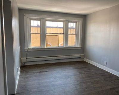 1 BR Apartment on Hertel Ave