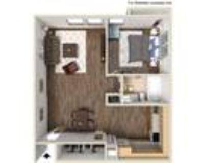Glenbrook Apartments - 1 bedroom - full kitchen