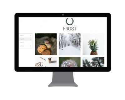 Digital Vertex Web Design Company Woodland Hills