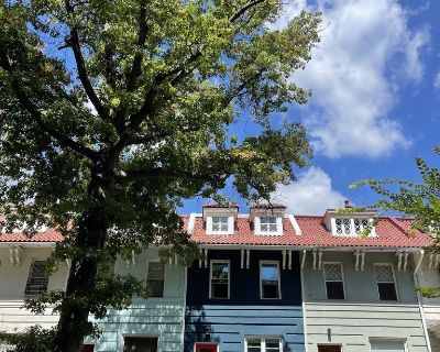 Lovely 1-br English Basement Apartment on Historic Tree-lined Street - Lanier Heights